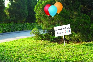 Graduation yard sign with balloons